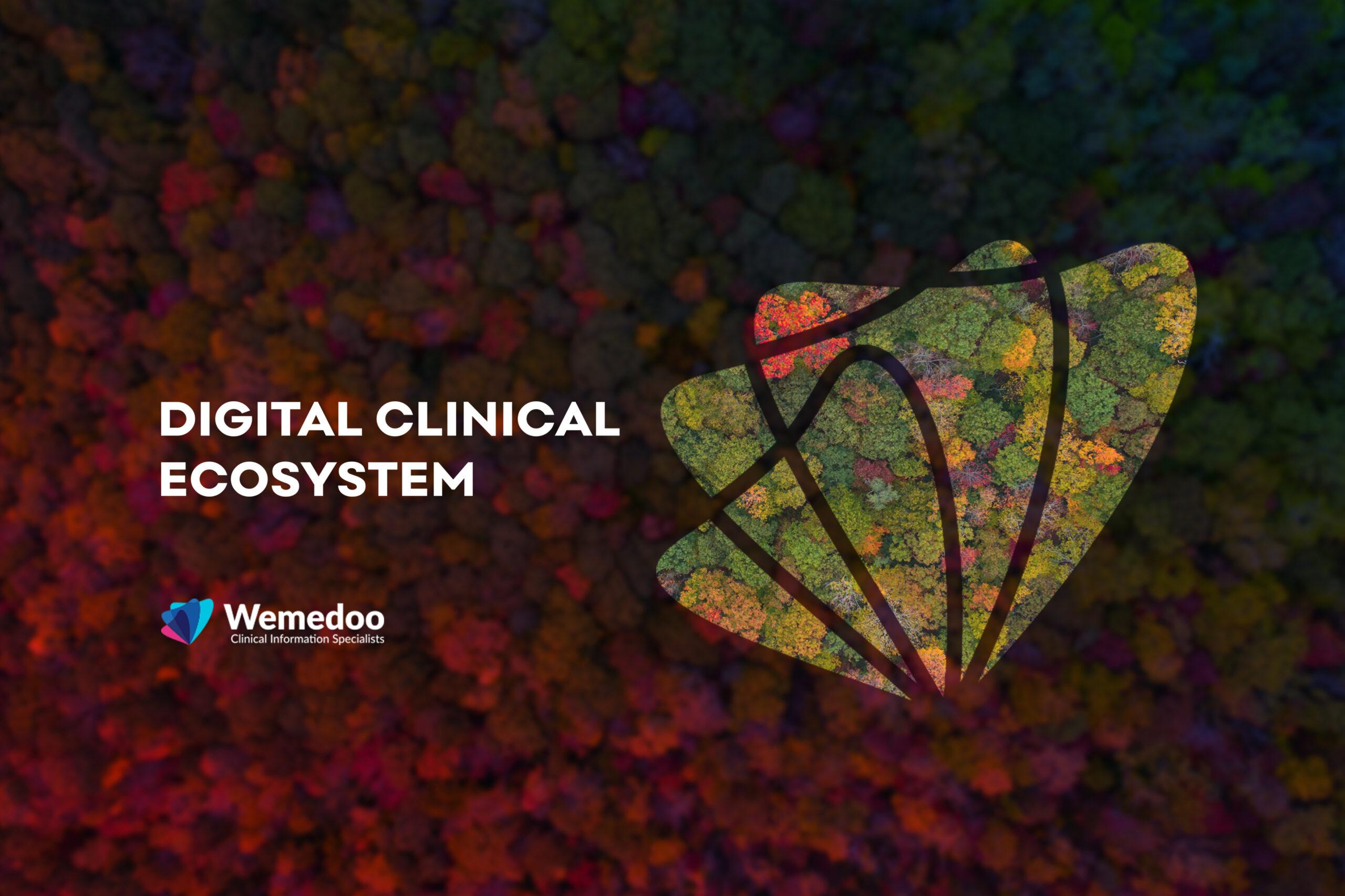 Healthcare Innovation Through a Digital Ecosystem